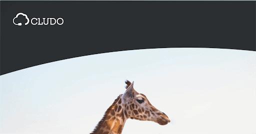 Omnichannel - jak stworzyć wielokanałową strategię obsługi klienta?